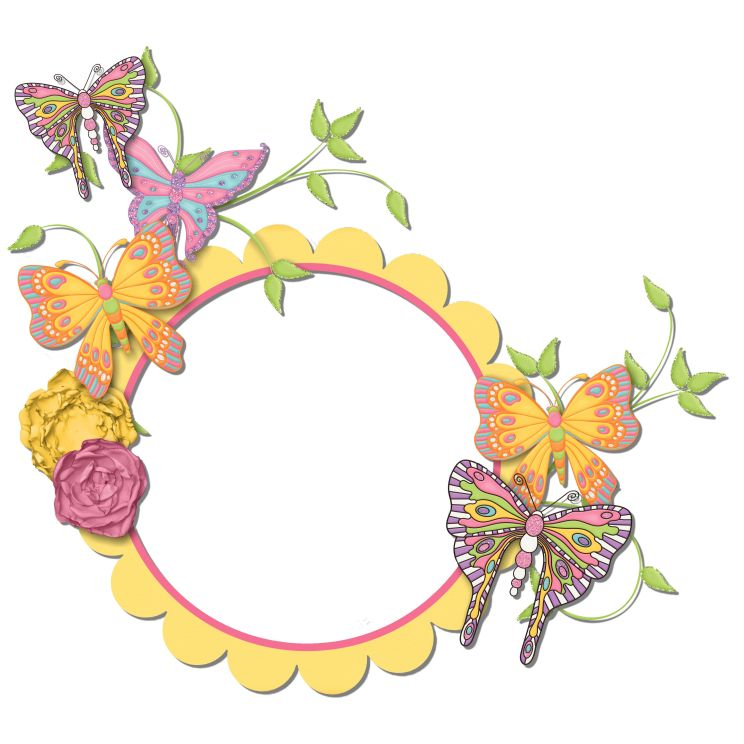 butterfly dreams cluster frame