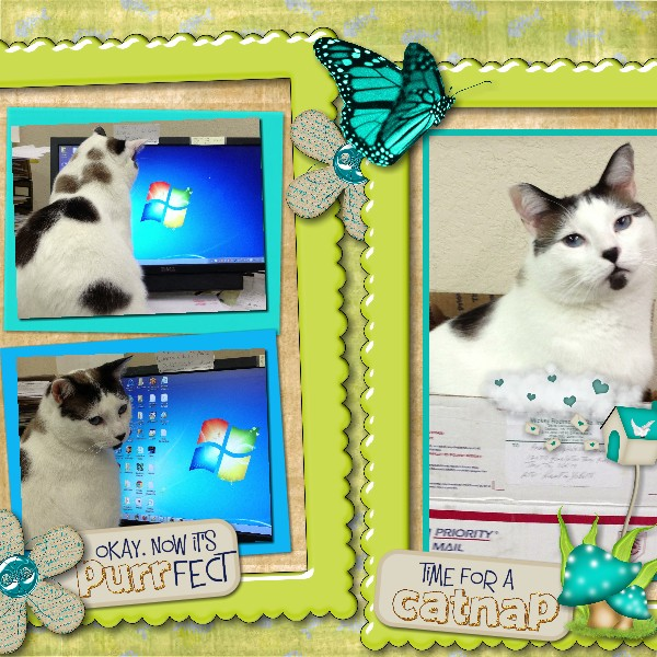 Pretty Kitty kit CatDesignz