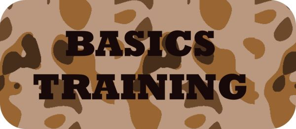 Basics Training Badge