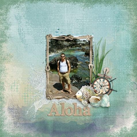 Aloha-on-the-Rocks