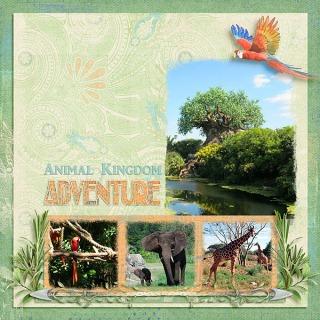 Animal-Kingdom-Adventure
