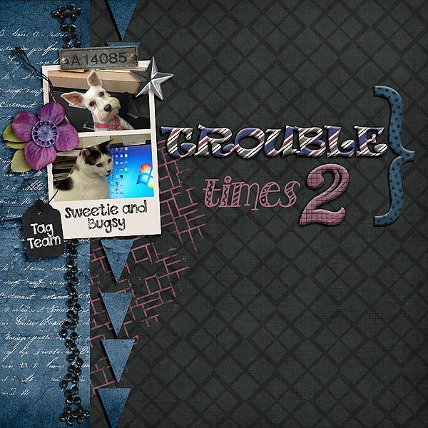 TroubleX2