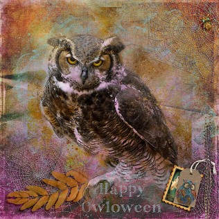 Happy-Owloween