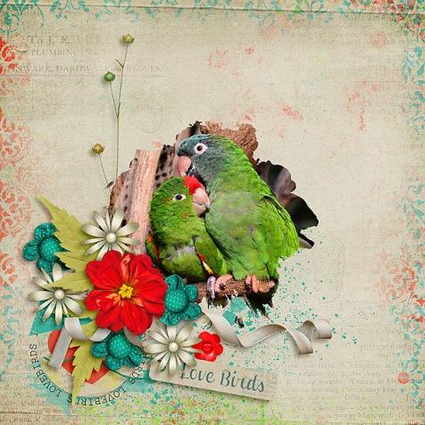 Love-Birds
