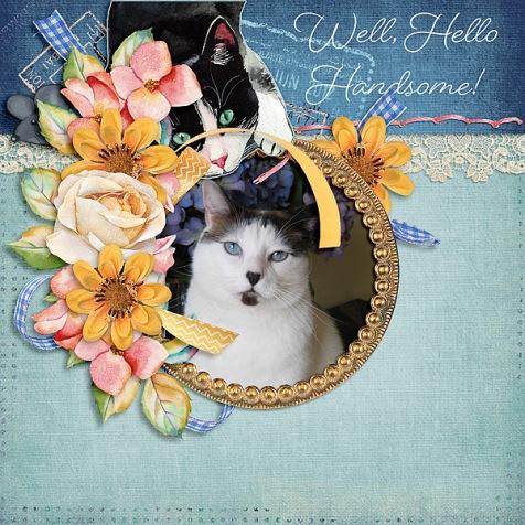 Well-Hello-Handsome