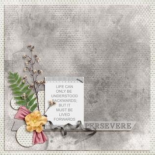 Persevere-Jan2018-UIA