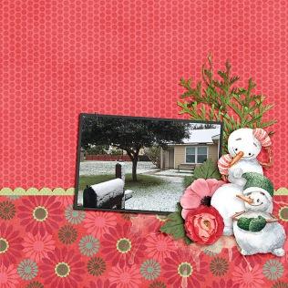 Tropical-Snow011118