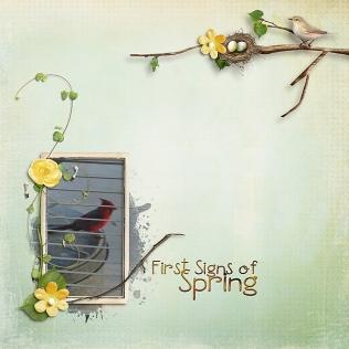 First-spring-robin-041718