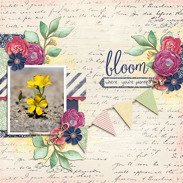 Bloom-Where-You-re-Planted-052418