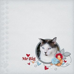 Mr_Big_Oct2018_PBP_white-space-challenge