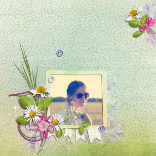 Spring-Daisies-UIA1903-600