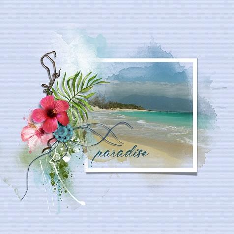 paradise-td-bbd-061819-600