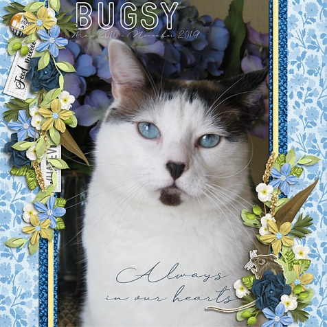Bugsy-Always-in-Our-Hearts-HT-112619
